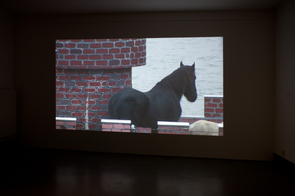 Martin Brand, Horse, Künstlerforum Bonn 2012